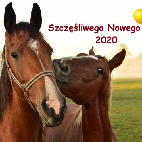 Dziękujemy za rok 2019 i życzymy szczęśliwego Nowego Roku 2020